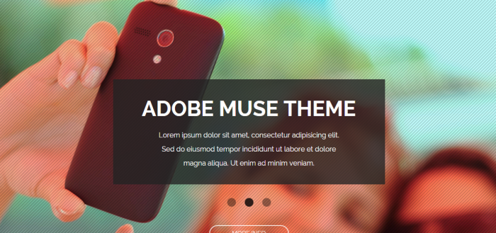 adobe-muse-shablon